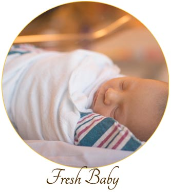 Fresh 48 baby  photography